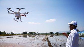 Petani Gunakan Teknologi Canggih Drone Untuk Tabur Pupuk