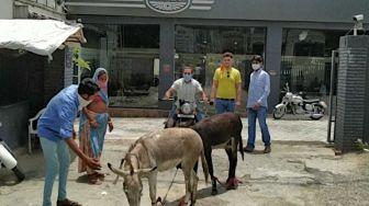 Geram karena Motornya Sering Ngadat, Pria Ini Sindir Dealer dengan Keledai