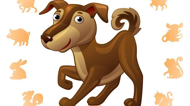 Shio anjing. [Shutterstock]
