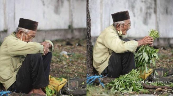 Kisah Haru Kakek Dalimin, Jualan Kangkung dan Ceritanya tentang Era Jepang