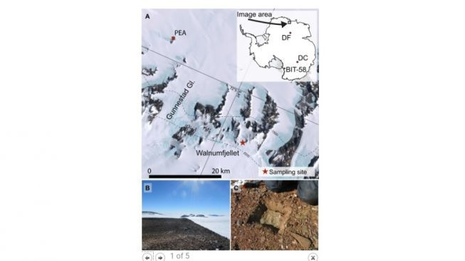 Former meteorological construction in Antarctica. [Science Advances]